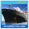 container shipping rate from Shanghai to KUCHING - Skype: colsales03