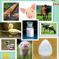 High quality mdcp for poultry feed ingredients