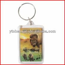 Photo double printed keychain made of acrylic in rectangle