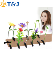 2015 New style super cute Plants small bean sprouts sprouting hairpin Hair Clip for Baby Girls Kids&adults Hair Accessories