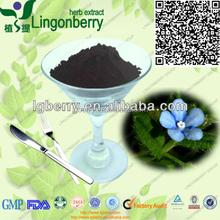 chinese herbal medicine Shikonin10%-30%/herbal remedies alkanet root powder/ Lithospermum Extract/Gromwell Extract Alkannin