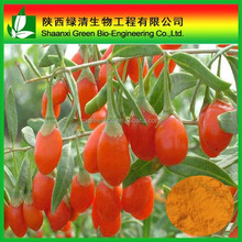 Healthcare products 100% Natural Ningxia Goji Berry Extract/Goji berry Powder