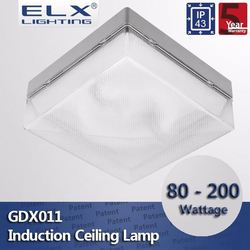 ELX Lighting aluminum frame with induction ceiling light