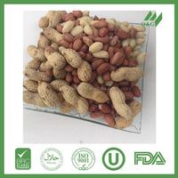 First quality raw peanuts