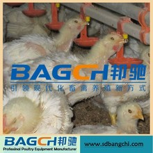 BC Series drinking system for broiler chicken house