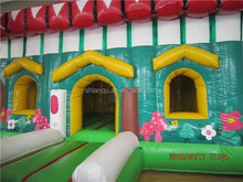 Newest inflatable bouncy house for sale/cartoon inflatable bounce house