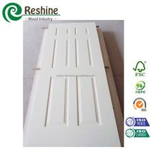 white moulded door with primer coating