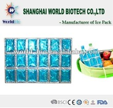Reusable Ice Packs For Food Storage(China Manufacturer)