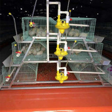 hot sale automated frame assembly/feed the chickens/automatic door for chickens