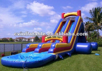 inflatable water slide for adult and kids ; inflatable fish animal water slide