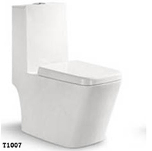 T-1007 stainless steel toilet ,ceramic toilet