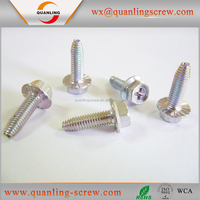 China wholesale custom hex socket cap self tapping screw