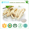 Hot selling Plant extract promoting physical endurance American ginseng extract