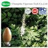 100% Natural Black Cohosh Extract/Black Cohosh Extract powder/black cohosh root p.e