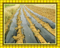 Agricultural plastic film for covering