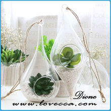 Wholesale Glass Teardrop Terrariums Perfect for Air Plants - FAST SHIPPING - Wholesale Glass Votive - Glass Air Plant