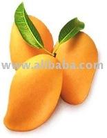 Philippine Mango