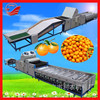 Fruit Farm Equipments High Accuracy Commercial Fruit Size Sizer