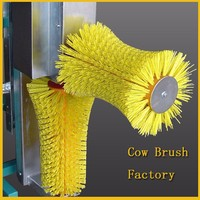 The cow washing brush improve the animal's blood circulation