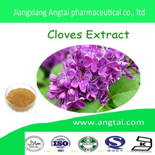 ISO Certificated High Quality Natural Pure Cloves Flower Extract