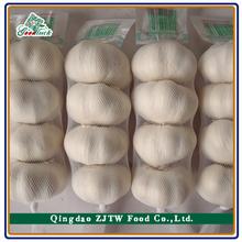 Wholesale Fresh Garlic (5.5cm up, 10kg Carton Packing)