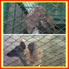 Surprising Quality!!!cheap chain link wire mesh fence for dog kennels