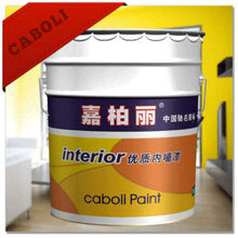 Caboli living room wall paint colors