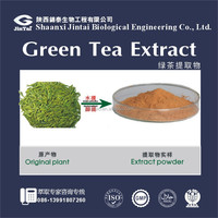 Natural Catechins EGCG Green Tea Extract