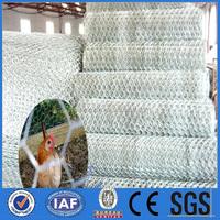 hexagonal wire mesh 10mm/heavy duty chicken wire/chicken wire cage
