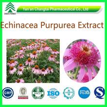 Factory supply Low price high quality Echinacea Purpurea Extract
