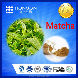 15 years FDA / GMP producter supply organic green tea extract / matcha with top quality Free sample for test