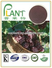 100% Natural grape seed extract for sale