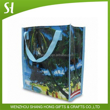 Hot sale wholesale custom design printed promotional pp woven shopping bag