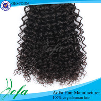 Nice style extension mongolian hair kinky curly lace front wigs