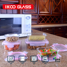 2015 Hot selling 10 pcs set glass food storage container / food storage box / lunch box