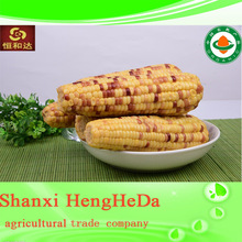 china products yellow corn specifications