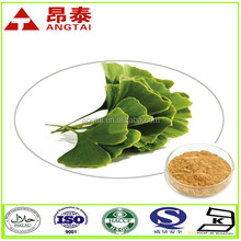 Pure natural Ginkgo biloba leaf extract powder for relieve symptoms of Tinnitus