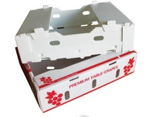 FRUIT AND VEGETABLE BOXES
