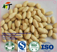 High quality Raw blanched peanut kernels, peanuts in shell, roasted peanut inshell