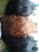 Top quality Indian hair