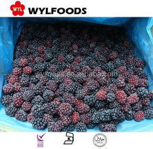 2015 china iqf frozen blackberry