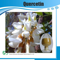 Organic 100% Natural High Quality with Best Price Quercetin