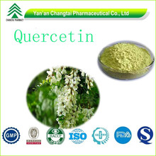 GMP Factory direct supply Top quality competitive price Quercetin dihydrate Plant extract powder