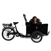Dutch bike cargo use 3 wheel electric motorcycle with cabin
