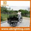 3 wheeler promotional motorized cargo bike tricycle usa