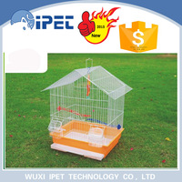 Ipet Hanging Tall Collapsable Bird Feeder Finch Carrier
