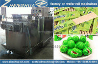 complete project on chewing gum Manufacturing machine processing plant