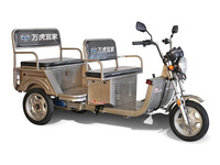 2016 Asia hot sales, 1000W mini electric passenger tricycle