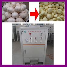 Provide Professional Garlic Breaking Machine With Technical Guide/High Accuracy Garlic Skin Removing Machine(skype:sophia.gtt)