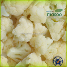 supply IQF frozen healthy food chinese frozen white cauliflower florets